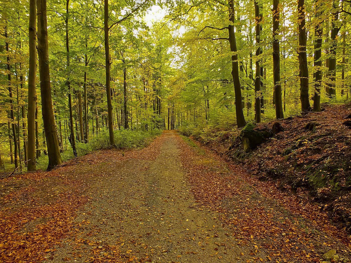 Autumn in Karkonosze